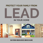 protect your family from Lead in the home